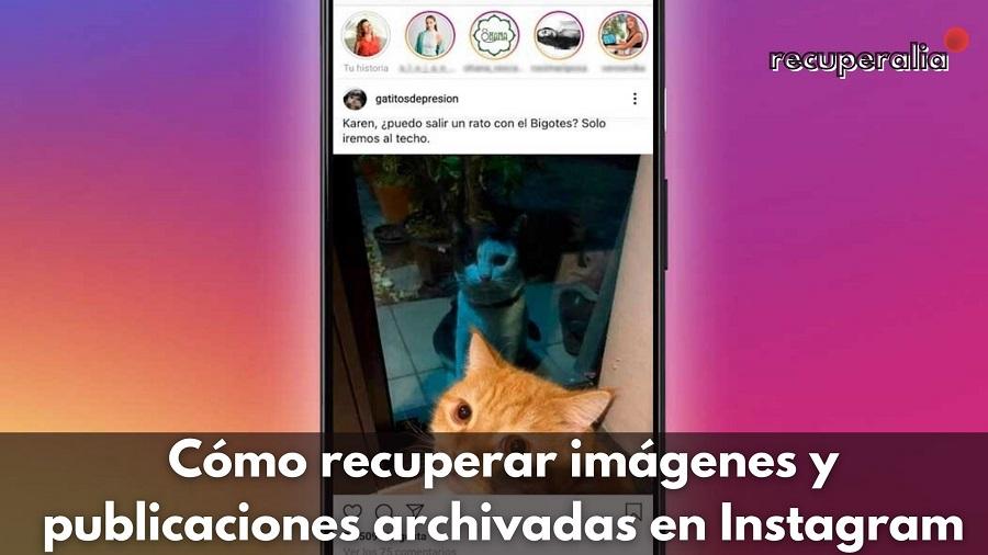 recuperar imagenes publicaciones archivadas instagram